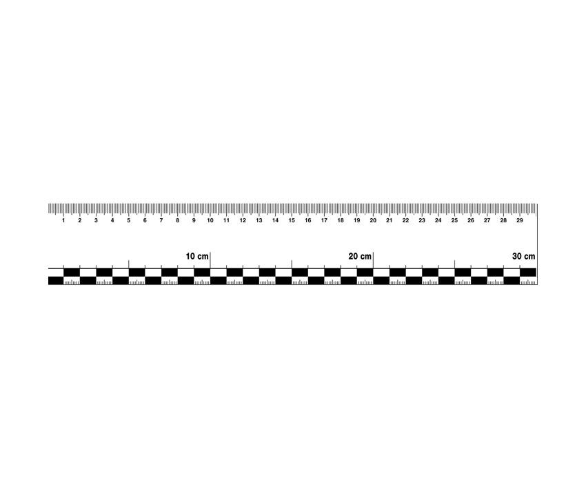 Haftlineal, Folie, 30 cm, Set