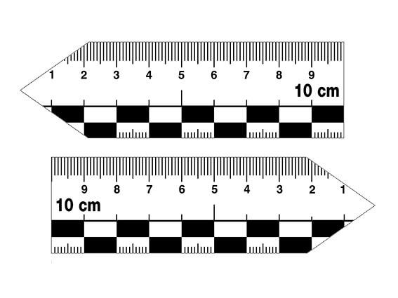 Zeigerlineal-Set, 10 cm, magnetisch, groß